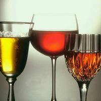 Large Range of wines at the School House Hotel and restaurant  in Swindon and Wootton Bassett